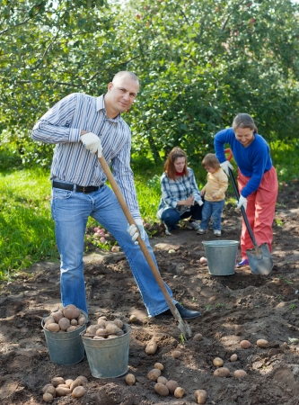 Happy family harvesting potatoes in field photo
