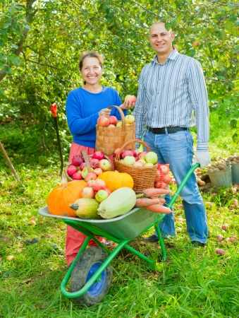 potato basket: Man and woman with crop of vegetables in garden Stock Photo