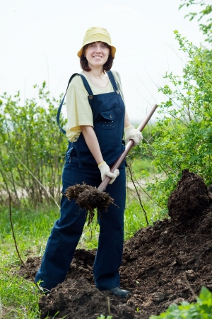 manure: farmer works with manure at farm Stock Photo