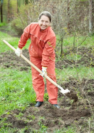 Mature woman working with shovel in orchard  photo