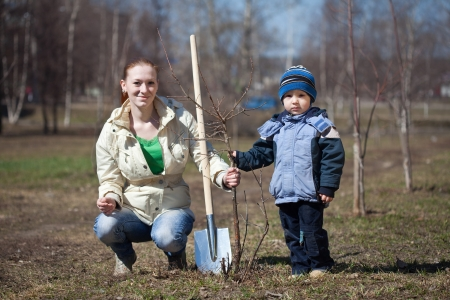 replanting: young woman with her son replanting  tree