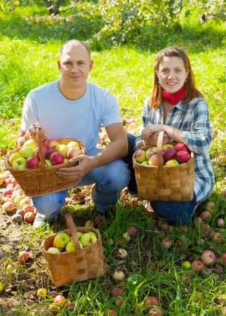 Happy couple with apples harvest in garden Stock Photo - 19528544