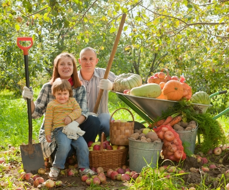 woman gardening: Happy parents and child with  harvested vegetables in garden