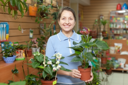 Female florist with anthurium flower at flower store  Stock Photo - 19628974