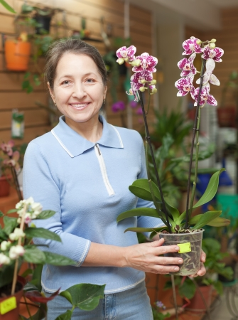 Female florist with Phalaenopsis orchid at flower store  photo