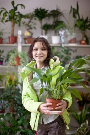 Woman chooses aspidistra flower in a flower shop photo