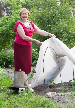 foil roll: Mature woman working with hothouse at  vegetables garden Stock Photo