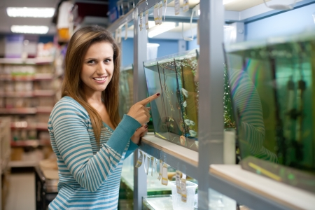 pet store: Woman chooses  fish in tank at petshop Stock Photo