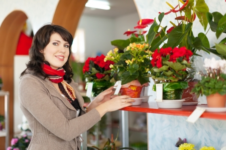 woman in the shop surrounded by different flowers Stock Photo - 19837896