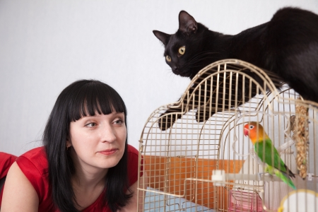 woman in red with  pets in home photo