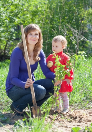 young woman with  little daughter sets  sprouts in spring photo