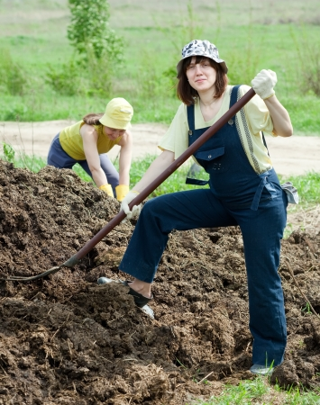manure: Female farmers works with manure at farm