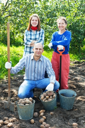 Happy family with harvested potatoes in field photo
