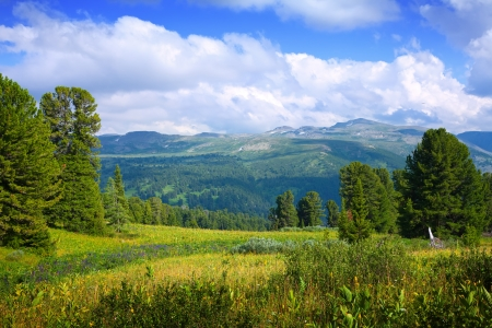 Landscape with forest mountains. Altai, Siberia Stock Photo - 21110218