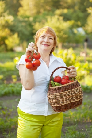 Happy mature woman with basket of harvested vegetables photo