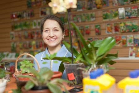 mature woman looks  flower in pot in garden shop photo