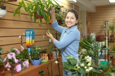 Happy mature woman with  Nepenthes plant surrounded by different flowers in flower store Stock Photo - 21409890