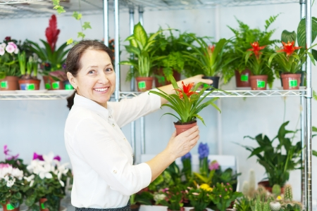 Happy mature woman with Cyclamen plant in flower store photo