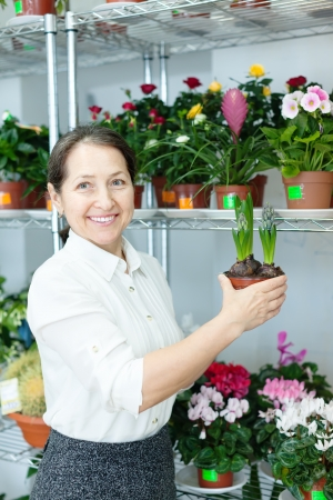 Female florist with hyacinth (Hyacinthus) at flower store  photo