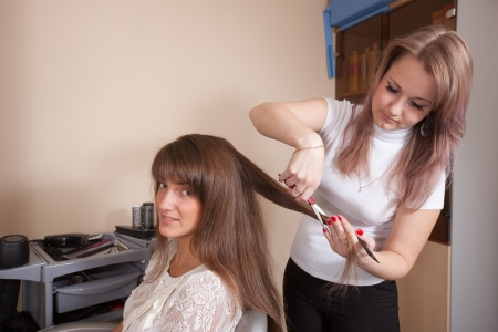hairtician: Female hairdresser working with long-haired girl Stock Photo