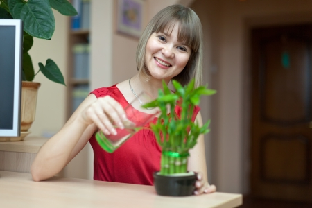 Young woman with lucky bamboo plant at her home photo