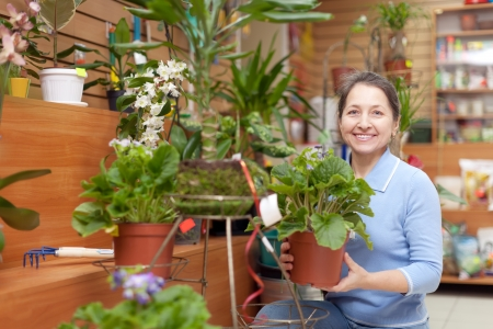 Happy mature woman chooses primula  in flower store photo