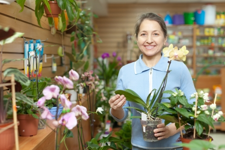 Happy mature woman with  Phalaenopsis surrounded by different flowers in flower store photo