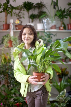 aspidistra: woman in the shop surrounded by different flowers
