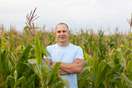 agriculture industry: man standing in field of corn