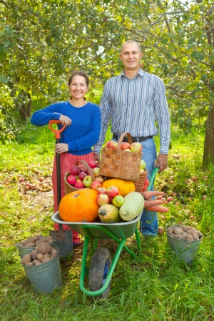 Man and woman  with  harvested vegetables in garden photo