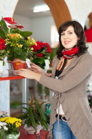 Woman chooses begonia in a flower shop photo