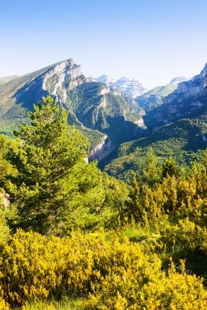 anisclo: Anisclo Canyon in summer. Huesca, Aragon Stock Photo