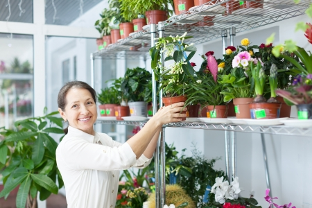 Happy mature woman chooses Stephanotis at flower store photo