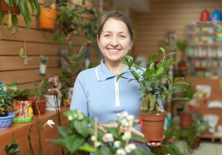 mature woman with  ficus plant (Bonsai) at flower store Stock Photo - 23718511