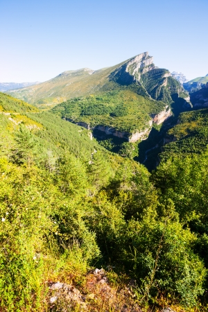 anisclo: Pyrenees Mountains landscape - Anisclo Canyon in summer. Huesca Stock Photo