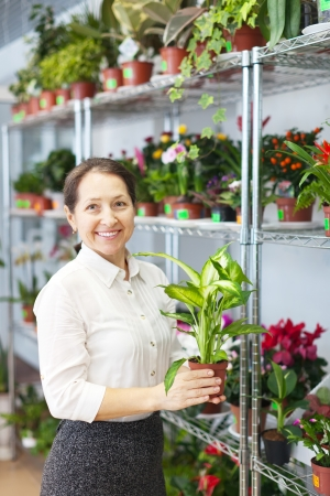 mature woman with Dieffenbachia plant in  store photo