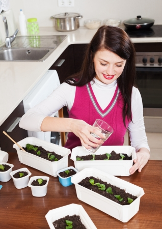 brunette woman working with  seedlings at home   photo