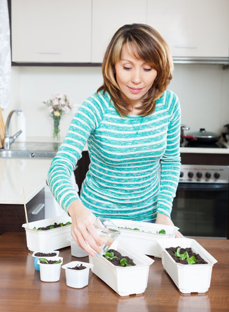 Female gardener in green  watering sprouts at home
