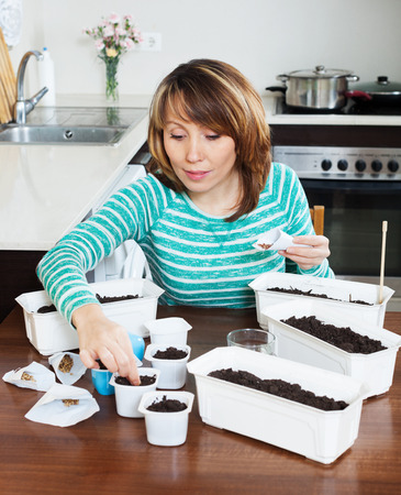 woman in green sowing seeds in pots   in home photo