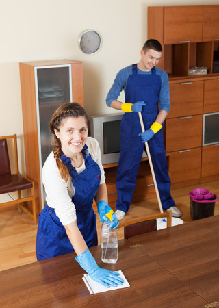 Team of professional cleaners cleaning in living room photo