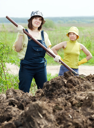 muck: Two women works with animal manure at field