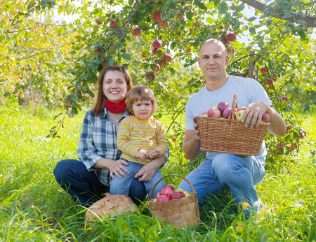 Happy  family  with apple harvest in orchard photo