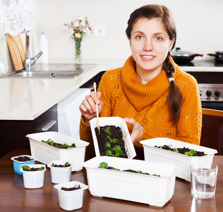 Girl working with green seedlings at table at home photo
