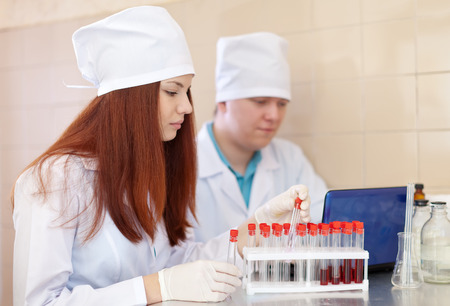 Two clinicians works with blood sample in medical laboratory photo