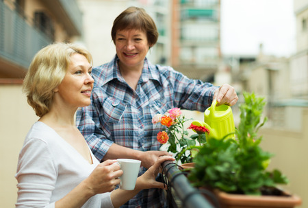 Two female mature pensioners drinking tea on balcony   Stock Photo
