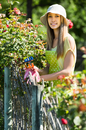 Happy woman in apron gardening with roses  photo