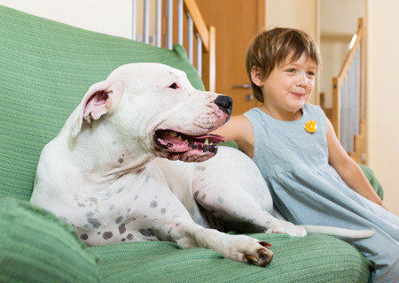 little girl on couch with dogo Argentino (focus on dog)  photo