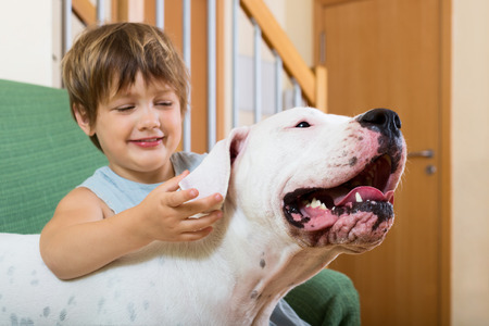smiling girl on couch with dogo Argentino (focus on dog)  photo