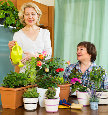 Two elderly female friends smiling near table with many flowerpots at home