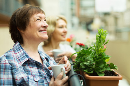 Two mature female drinking tea on balcony and smiling photo